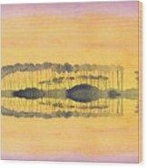 Walton County Wood Print