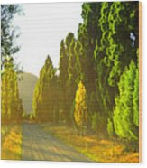 Wanaka Morning Light Wood Print