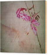 Wanda Wood Print