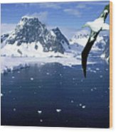 Wandering Albatross Over The Le Maire Channel Wood Print