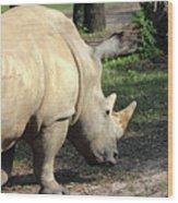 Wandering Rhino Wood Print