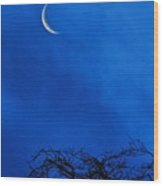 Waning Crescent Wood Print