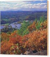 Wantatisquet Mountain Foliage Wood Print
