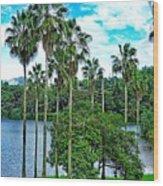 Waokele Pond Palms And Sky Wood Print