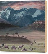 Wapiti Heaven Wood Print