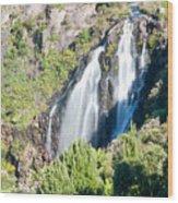 Waratah Falls Tasmania Wood Print