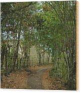 Wariman Pathway Wood Print
