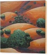 Warm Afternoon Light On Ca Hillside Wood Print