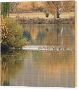 Warm Autumn River Wood Print