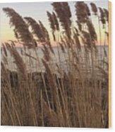 Warm Breeze Wood Print