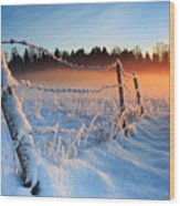 Warm Cold Winter Sunset Wood Print