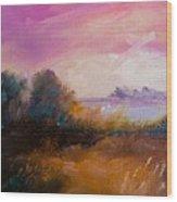 Warm Colorful Landscape Wood Print