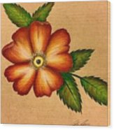 Warm Flower Wood Print