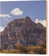 Warm Light In Red Rock Canyon Wood Print