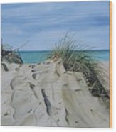 Warren Dunes Wood Print