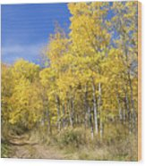 Wasatch Fall Wood Print