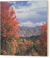 212m45-wasatch Mountains In Autumn  Wood Print