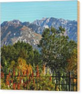 Wasatch Mountains In Autumn Wood Print
