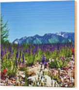Wasatch Mountains In Spring Wood Print by Tracie Kaska