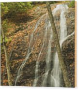 Wash Hollow Falls Nantahala National Forest Nc Wood Print