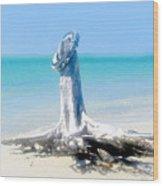 Washed Ashore Wood Print