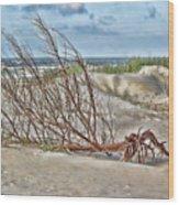 Washed Ashore - Sketch Wood Print