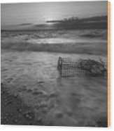 Washed Up Crab Cage 16x9 Bw Wood Print