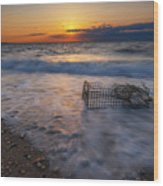 Washed Up Crab Cage 16x9 Wood Print