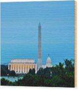 Washington D.c. Wood Print