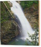 Washington Falls 2 Wood Print