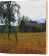 Washington Homestead Wood Print