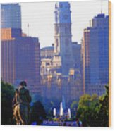 Washington Looking Over To City Hall Wood Print