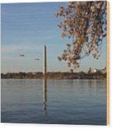 Washington Monument Wood Print by Megan Cohen