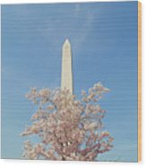 Washington Mounument Wood Print