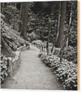 Washington Park Wood Print