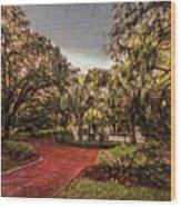 Washington Square In Mobile Alabama Painted Wood Print