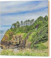 Washington State Coastline Wood Print