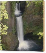 Washington Waterfall Wood Print