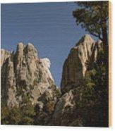 Washingtons Profile II Wood Print