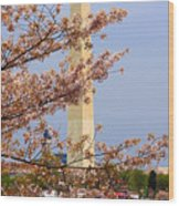 Washinton Monument In Spring Wood Print