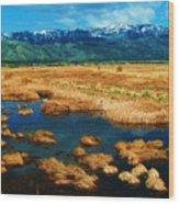 Washoe Valley Wood Print