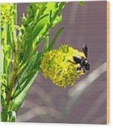Wasp 1 Wood Print