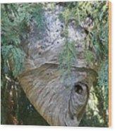 Wasp Hive Wood Print
