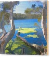 Wat-0002 Avoca Estuary Wood Print