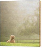 Watch Dog Wood Print