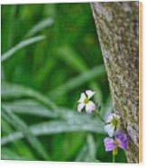 Watch For Fae Folk Wood Print