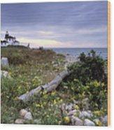Watch Hill Lighthouse - Fm000062 Wood Print