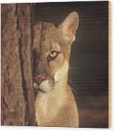 Watcher In The Woods Wood Print