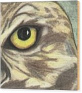 Watchful Eye Wood Print