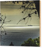 Watching The Ships Go By Wood Print